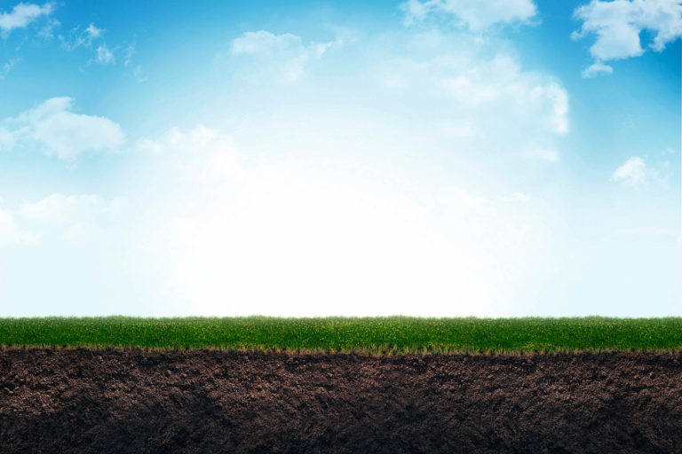Managing Soil Fertility with Organic Amendments