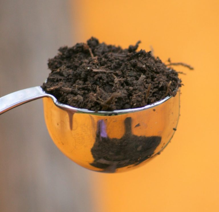 The Care and Feeding of Soil Microbes