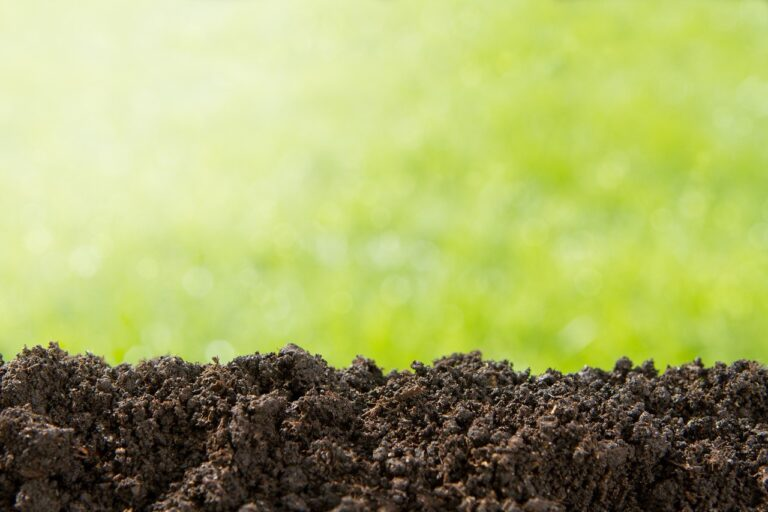 How Much N Can You Expect from Organic Fertilizers and Compost?