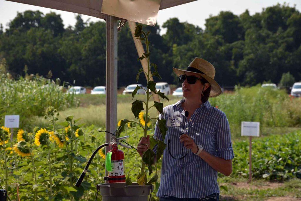 Agronomist Valerie Bullard