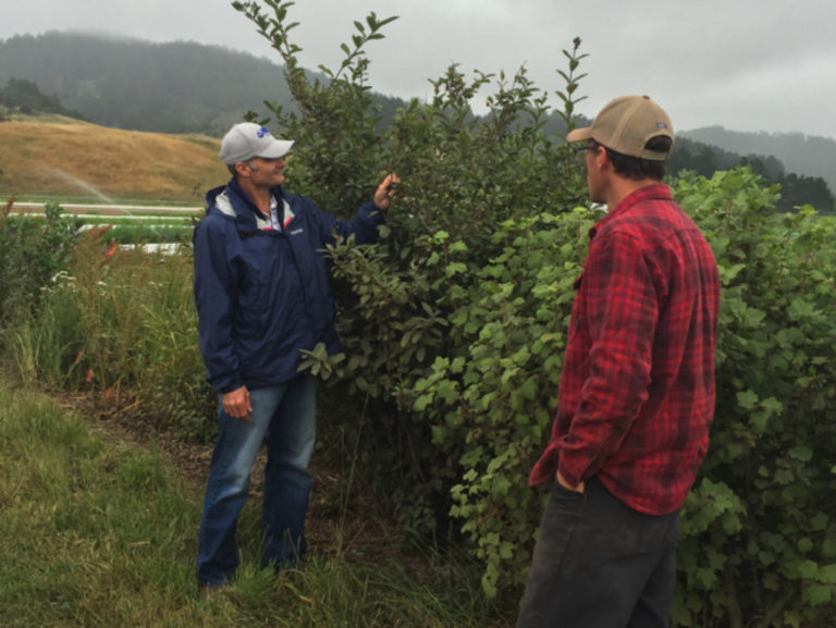 Organic Farmers–Experienced or Brand New—Are All Welcome at NRCS