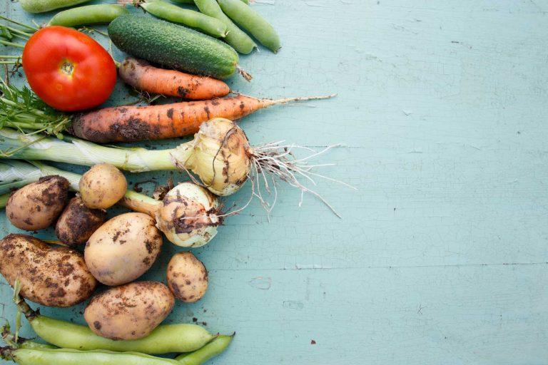 Navigating the Organic Certification Process with USDA's National Organic Program