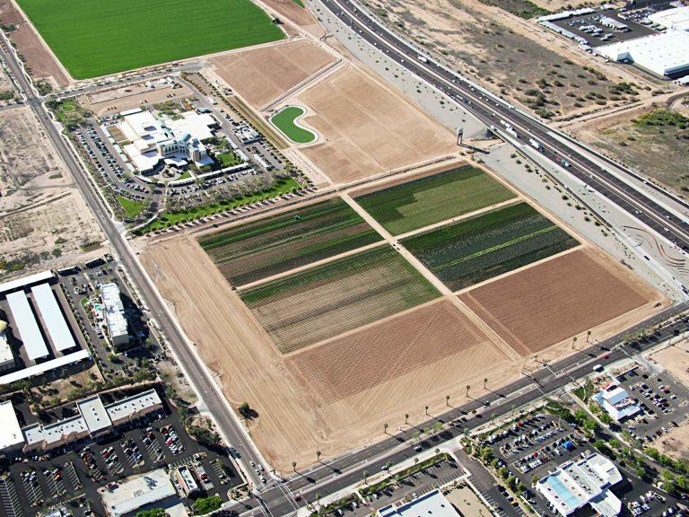 Celebrating Organic Farming in Arizona