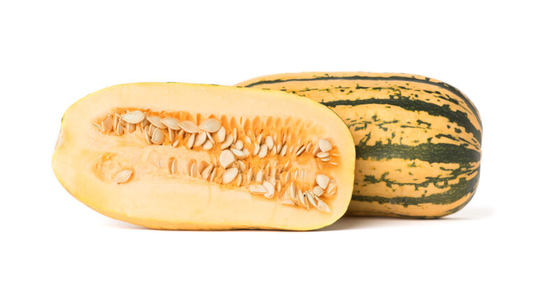 Putting the Winter Back in Winter Squash