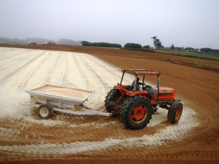 Anaerobic Soil Disinfestation as an Organic Systems-Based Approach